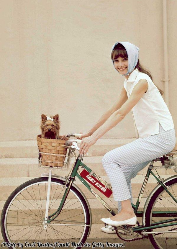 Audrey & dog on bike