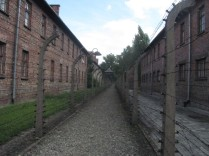 2016-0803 Auschwitz-Birkenau (2)