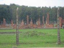 2016-0803 Auschwitz-Birkenau (3)