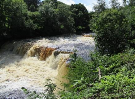 Aysgarth Falls (1)