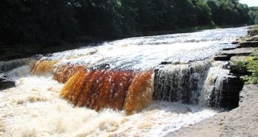 Aysgarth Falls (4)