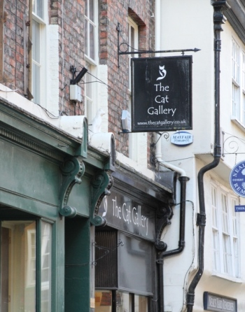 Cat gallery shop York