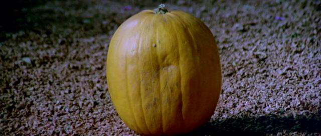 Slipper & Rose pumpkin (2)