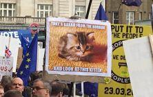 Brexit protest London 23-3-2019 (20)