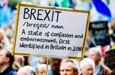 Brexit protest London 23-3-2019 (34)