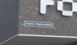 Audrey Hepburn plein 01