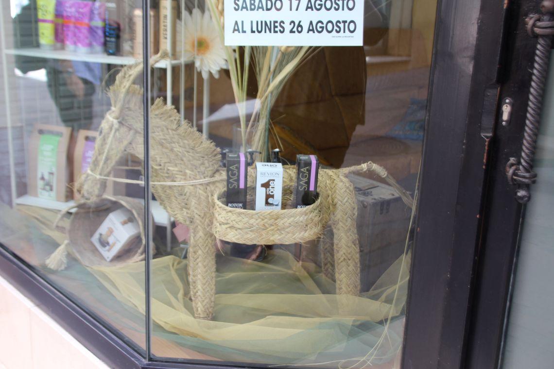 Donkey IMG_4456 Antequera