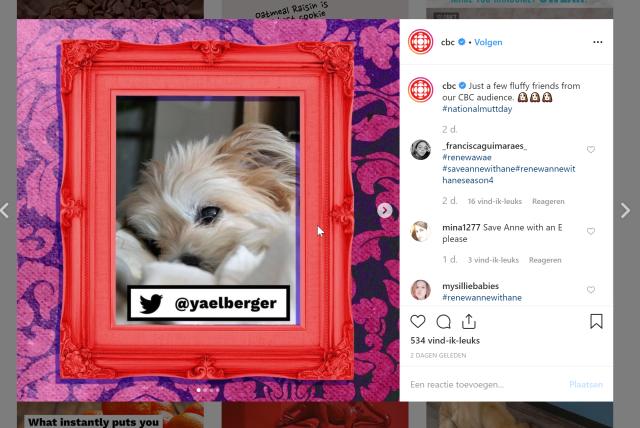 2019-12-05 13_39_13-CBC (@cbc) • Instagram-foto's en -video's